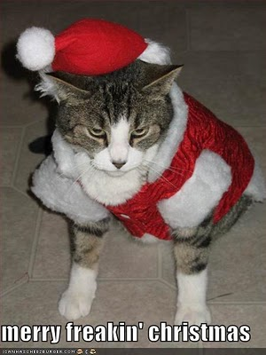 funny-pictures-merry-freakin-christmas-cat